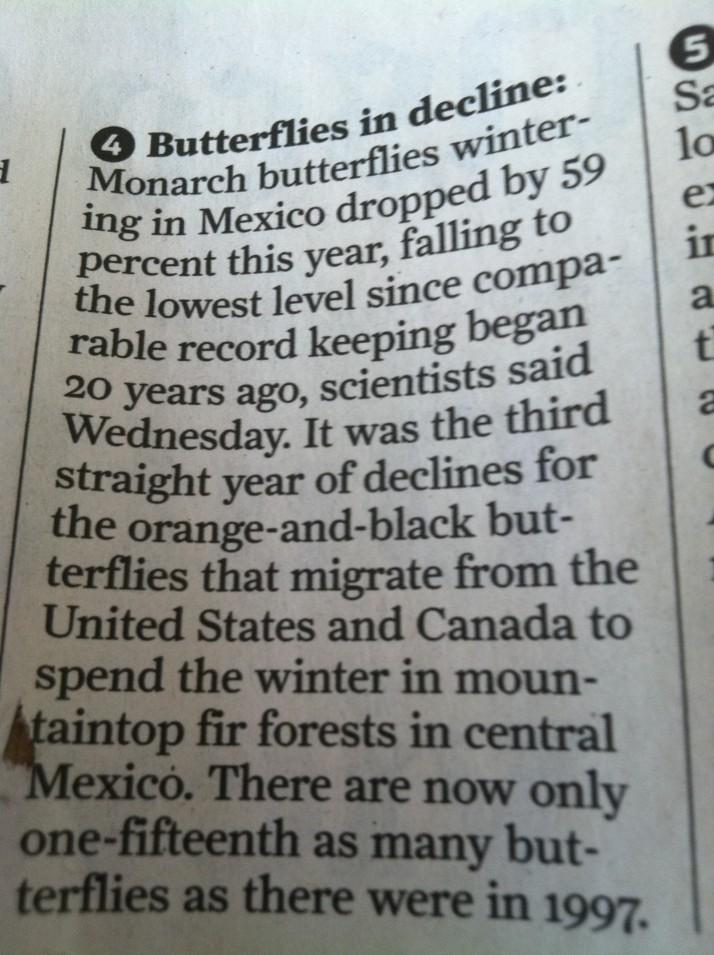 Butterfly Habitat?